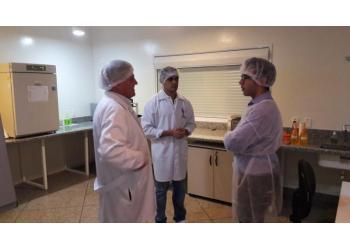 Rodolfo Rumpf, Paulo Soares e Thomas Nemes
