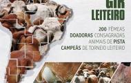 Leilão Liquidação Gir Leiteiro Monte Verde - 28/05/16