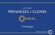 Prenhezes de clones é destaque em leilões da Expoinel