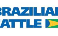 Geneal é a nova associada do Projeto Brazilian Cattle da ABCZ